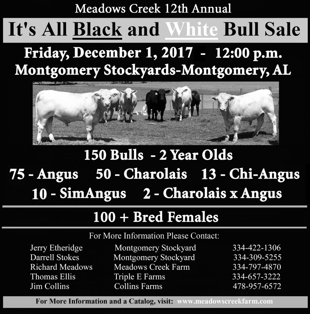 Black-White Sale 2017 Meadows Creek -p