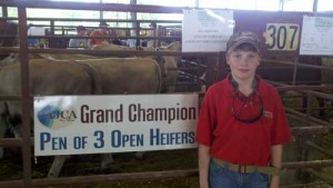 Grand Champion Open Heifers - Will Meadows